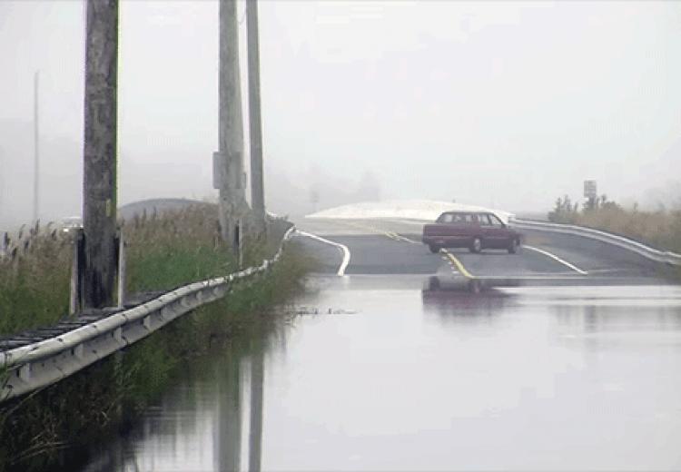 Wetlands 101: Wetlands & Sea Level Rise