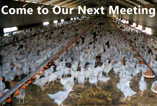 US Agrisoil's CEO Talks New Technology for Chicken Litter