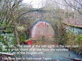 tunnel-mouth-image-new-quote