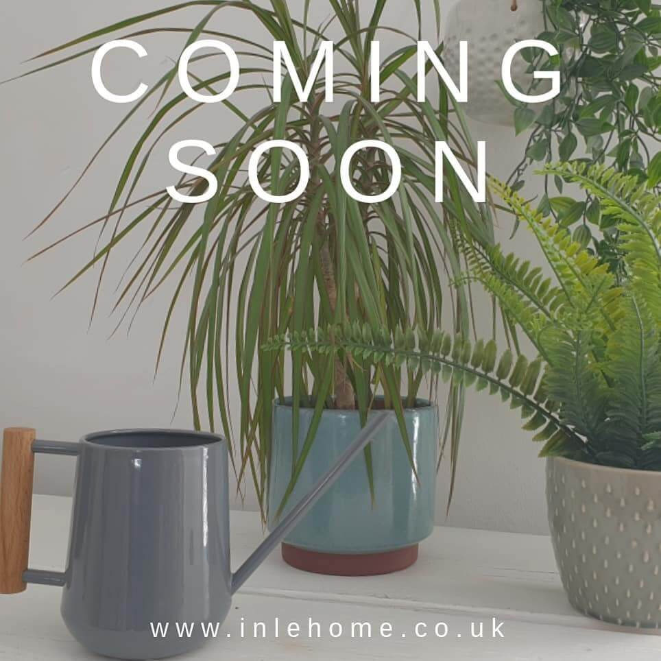 🌼🌿 Cannot wait to launch our new range of pots and accessories for your indoor garden 🌿🌼 . Watch this space