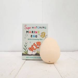 Hatch Your Own Marine Animal by Rex of London
