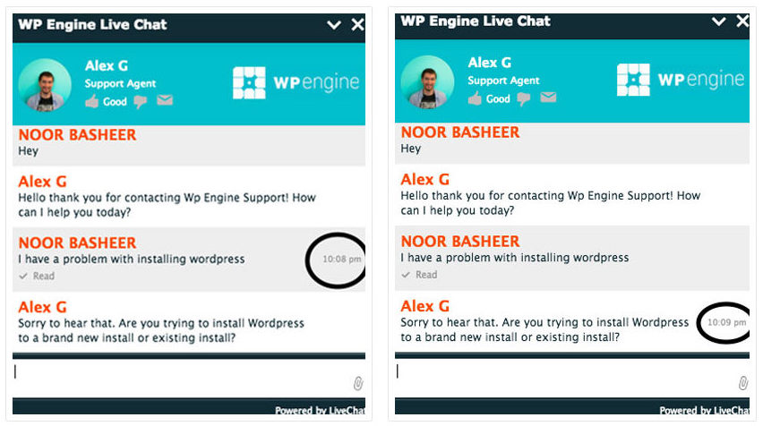 WP Engine support comparison
