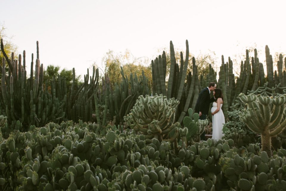 Desert Botanical Gardens wedding phoenix