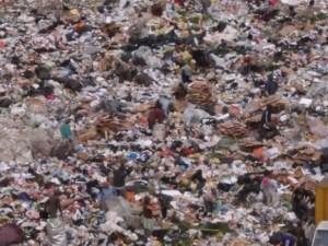 Dump2