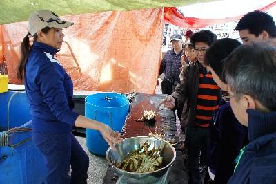 Fish market, Stevston
