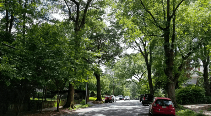 Our TPO Recommendation For Inman Park