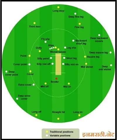 Cricket ground diagram