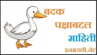 Duck Information in Marathi