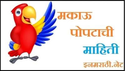 macaw bird information in marathi