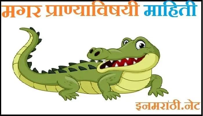 Crocodile Information in Marathi