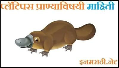 platypus animal information in marathi