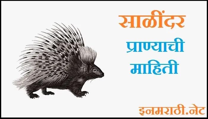sayal animal information in Marathi