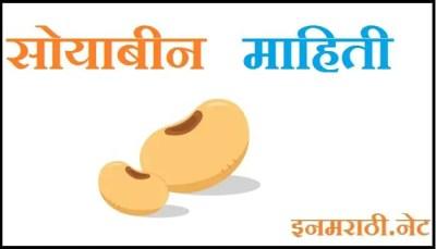 soybean information in marathi