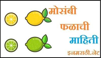sweet lime fruit information in marathi