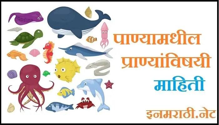 water animals information in marathi language