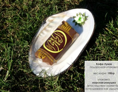 Упаковка подарочная Ракушка с пачкой 100 граммов_small