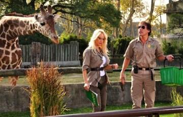 Locos sueltos en el zoo