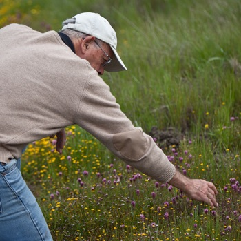 Docent at Jasper Ridge Biological Preserve