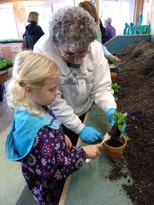 planting at Filoli Spring Fling