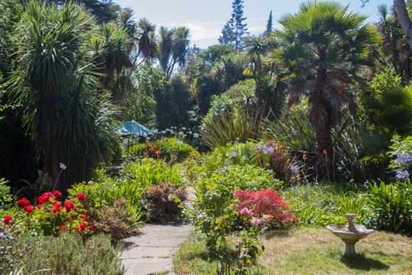 Dan_full garden view