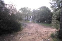 4831 Casa Algaida Sencelles (2)