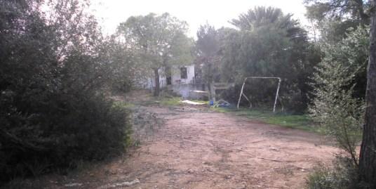 4831 Casa Algaida