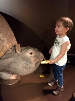 Kindermuseum