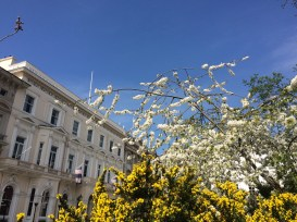 St James' Square in springtime