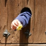 child's hand poking through door with flower, to represent the hope of healing with family constellation work.
