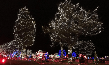 Rotary Lights in La Crosse, Wisconsin