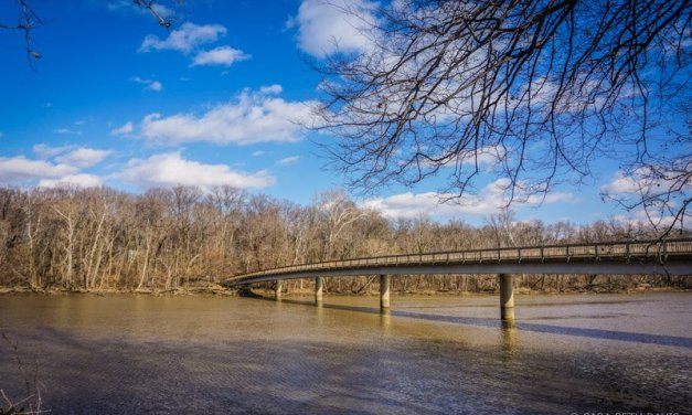 Hike 2 of 52 – Theodore Roosevelt Island Hiking Trails
