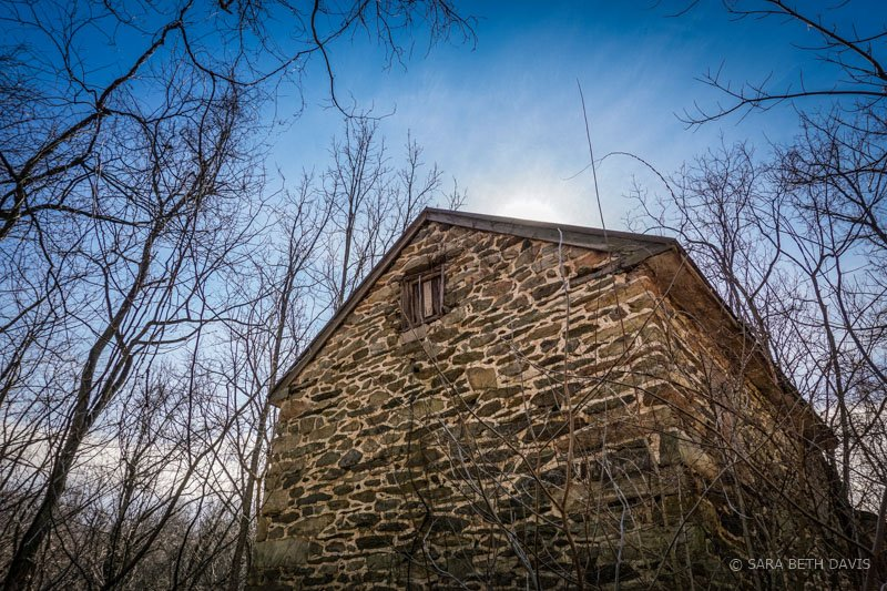 BLUE RIDGE CENTER FOR ENVIRONMENTAL STEWARDSHIP Farmstead Trail Hike
