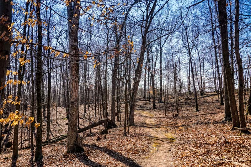 Ball's Bluff Battlefield Regional Park Hike