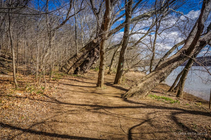 Hiking in Riverbend Park, Great Falls, Virginia