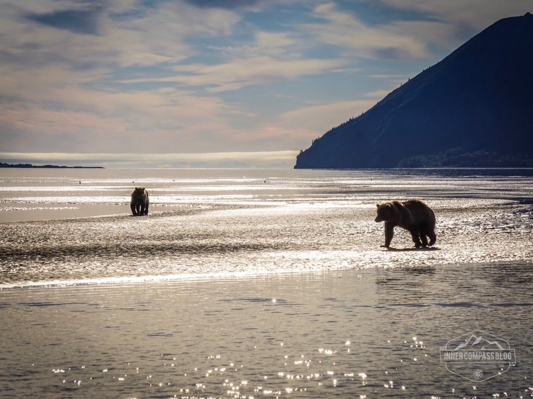 Lake Clark National Park and Preserve