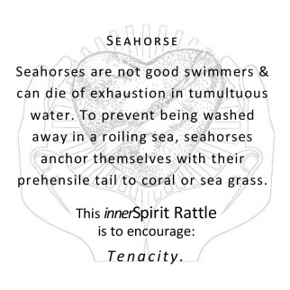 Seahorse innerSpirit Rattle Storycards