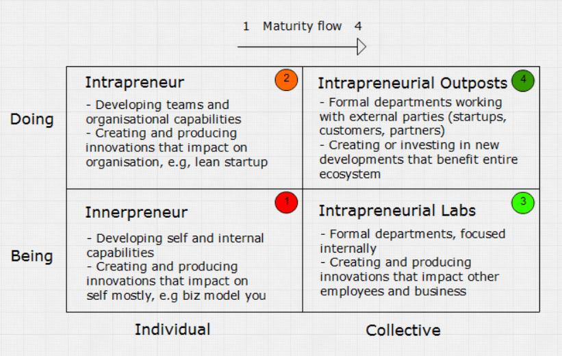 intrapreneur matrix