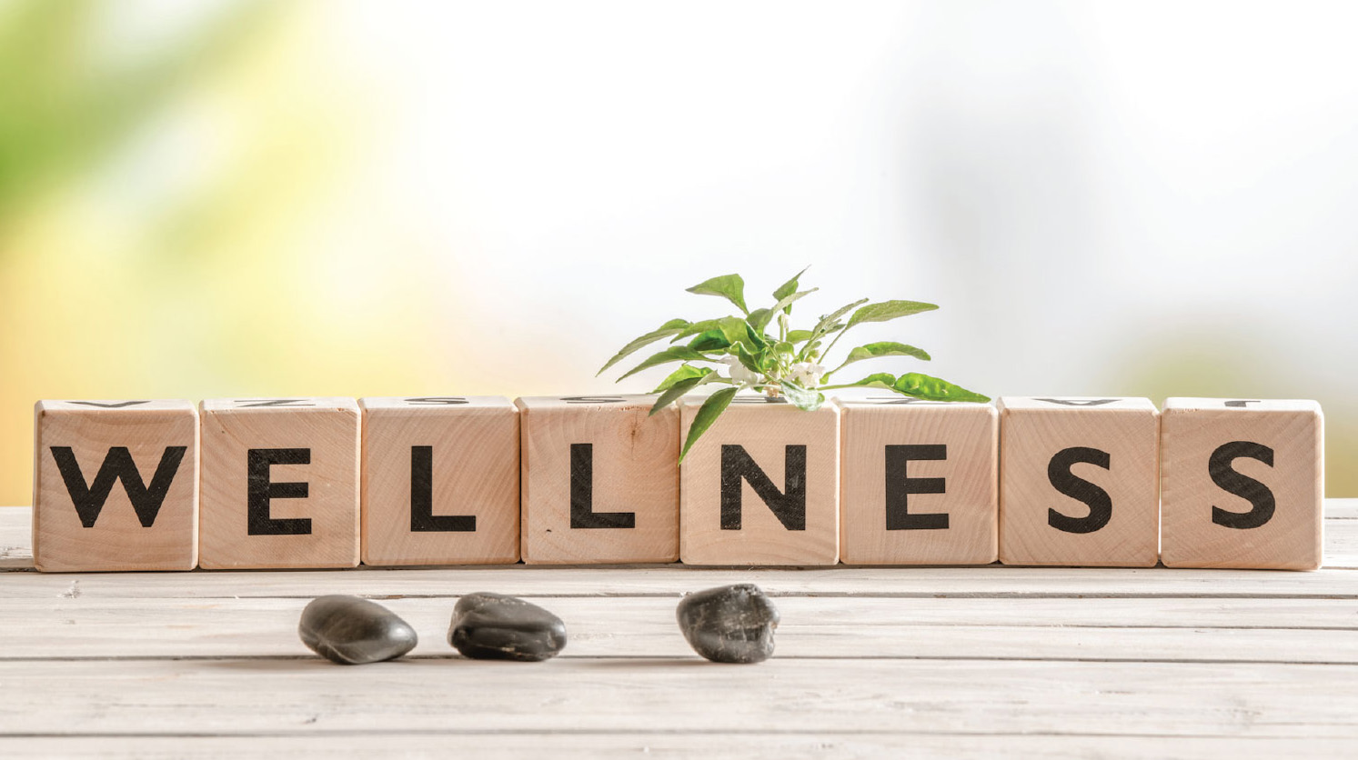 You are currently viewing My Experiences with Wellness Meditation and Tithing