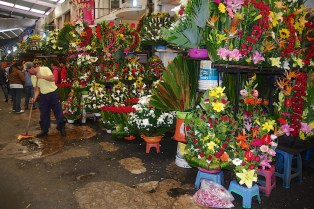 I read online that there are over 1000 stalls of flowers at this market.
