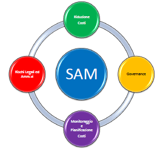 BSA - Software Asset Management - SAM