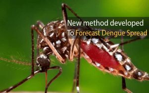 New method developed to forecast dengue spread