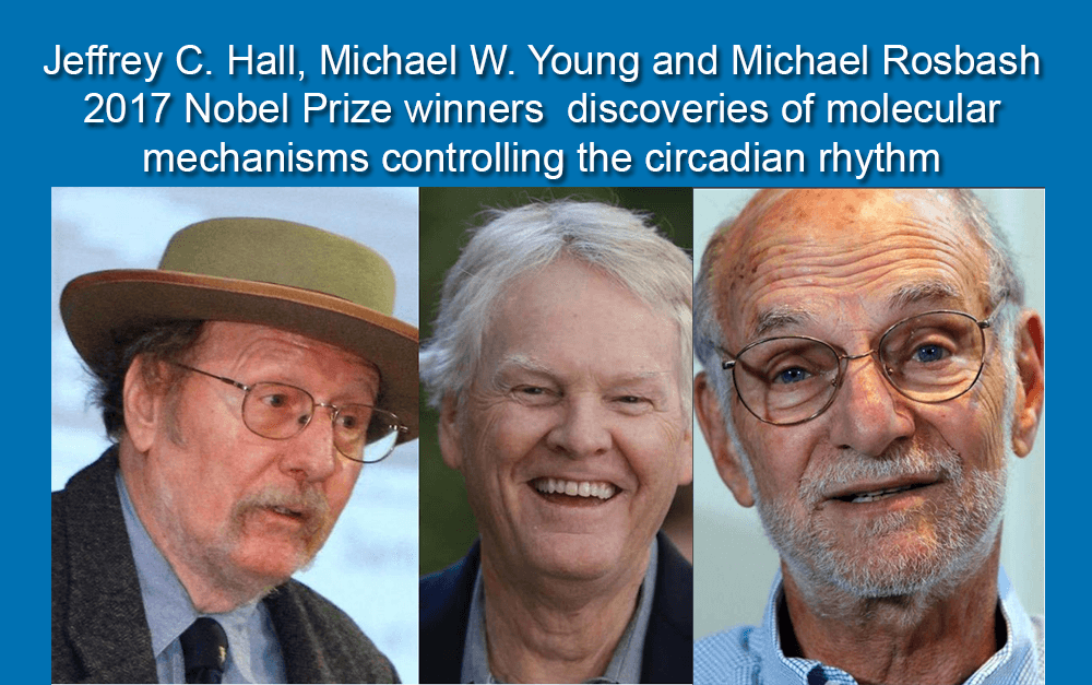 Jeffrey C. Hall, Michael W. Young and Michael Rosbash 2017 Nobel Prize winners discoveries of molecular mechanisms controlling the circadian rhythm