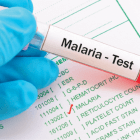 eradication program against malaria in Odisha malaria control