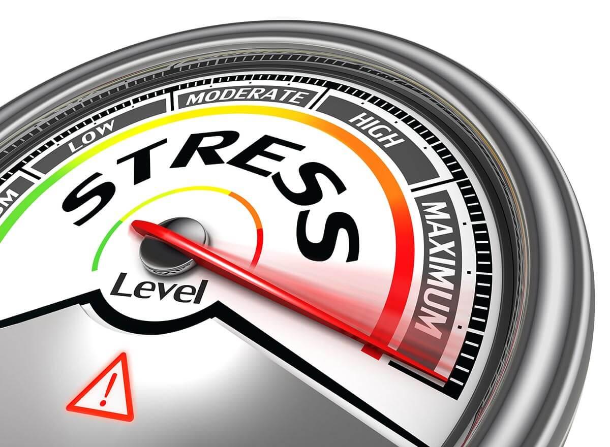 fertility diet stress recipe