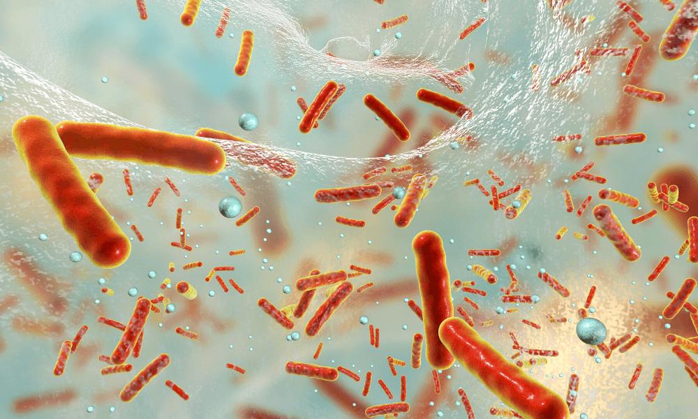 Post antibiotic world 1