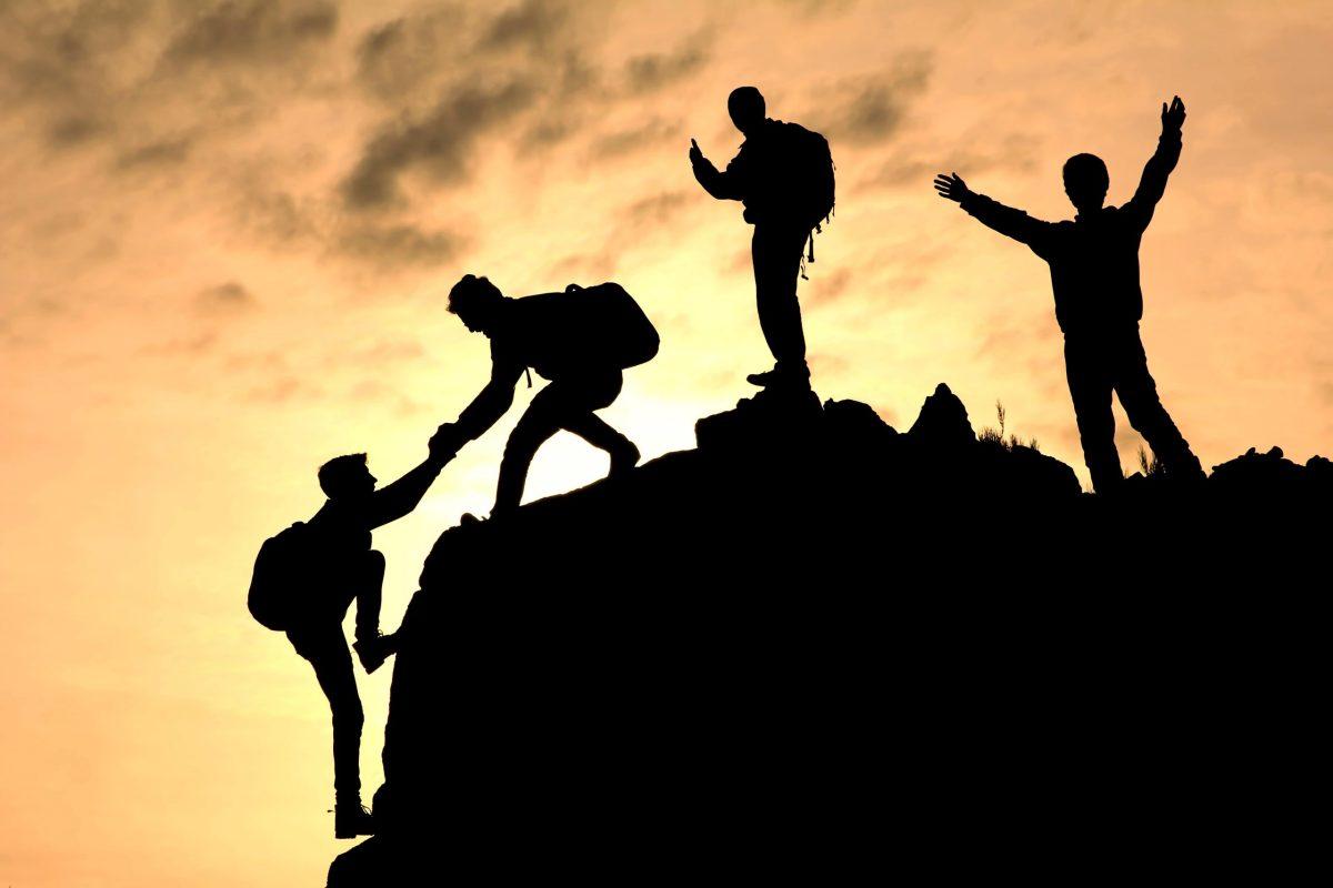 team or freelancer