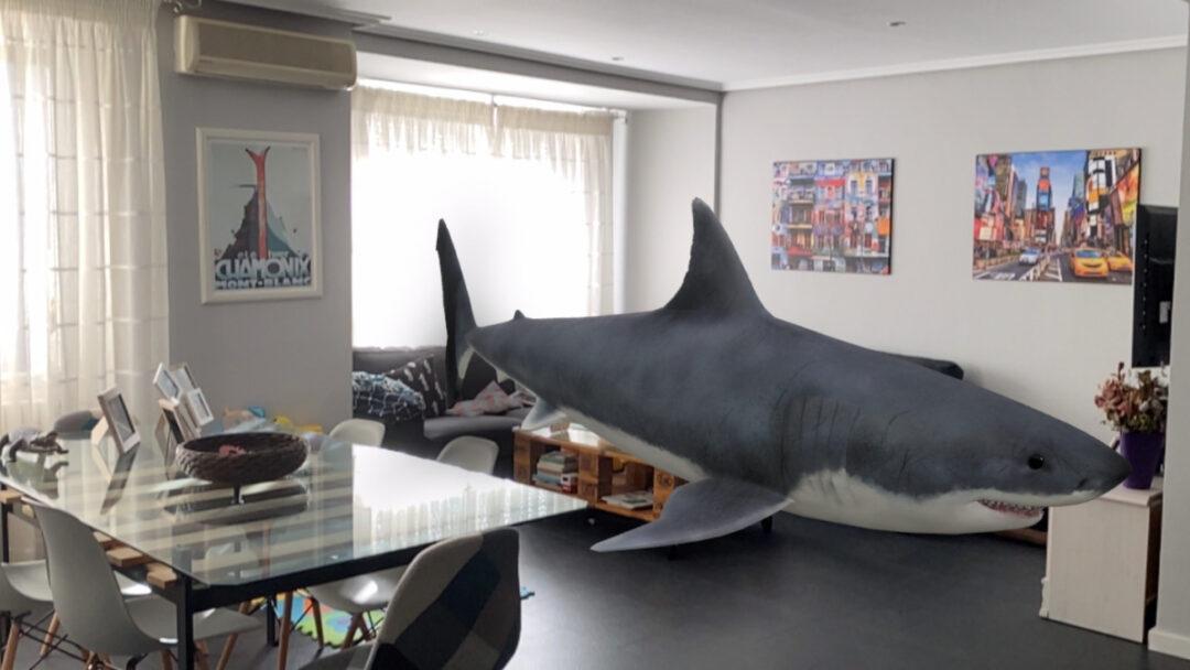gracias a la realidad aumentada puedes colocar un tiburon en tu salon con google 1 e1600681395414 - Activa la realidad aumentada de Google para ver un tigre en tu casa