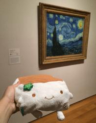 MOMA 11
