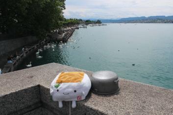 Tofu San at Lake Zurich