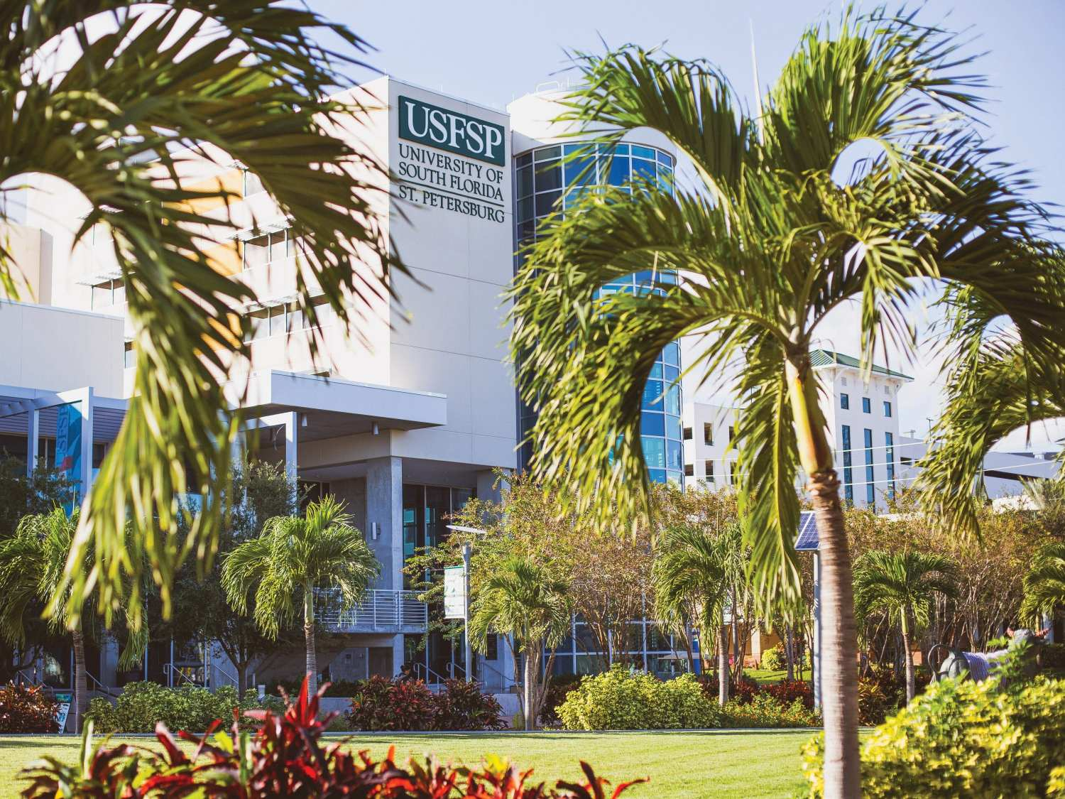 St. Pete Innovation District USFSP